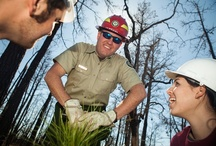 Texas A&M University System Partners / by Texas A&M Engineering Extension Service - TEEX