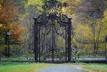 Gardens and exteriors / by Ludovica Falzetta