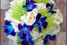 Wedding Ideas / by Nikki Bittner