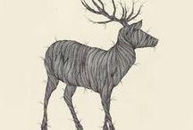 Drawing / by Eilish .
