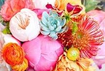 floral / by Monique Welker