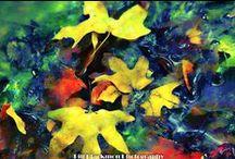 seasons / by John Calhoun