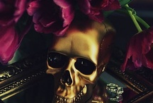Skull love / by Alex C. {Hydrangea Girl}