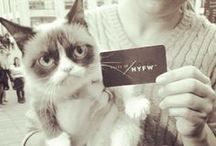 NYFW SS 2014 Priceless / #NYFW #SS14 Priceless / by FacesOfNYFW .com