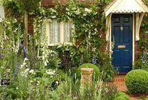 Gardens & Exteriors / by mesa63