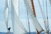 Sail Away / by Jambee