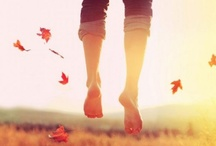 Fall / by Jambee