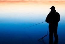 Fishing / by Heart Broken  Bill