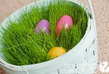 easter / by Shari Kloos