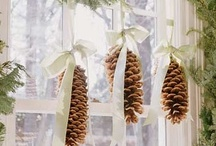 Christmas/Holiday Decor / by Breeana Milani