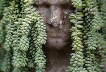 Gardening and Landscape Design / by Jillian Neary