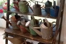 Watering Cans & Galvanized Goodies :) / by Pamela (Pam)_ Dyer