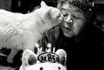 Animals / お気に入り / by Ritsuko