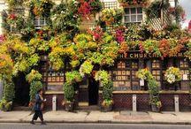 London / by Em Sheltry