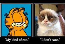 Grumpy & Garfield! / by Jessica M