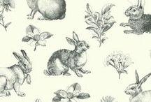 Patterns / by Berta Viteri Ramírez