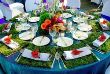 enchanted spring gala / by Elissa- One Stone Events