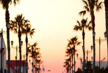 wow LA / #wow Los Angeles / by GeraldineTrip