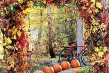 Autumn/Halloween/Thanksgiving / by Tony Dionne Ocker