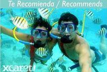 RECOMENDACIONES PARA VISITAR  / El Hotel Flamingo Cancún te recomienda que visites estos lugares si estas de #VacacionesEnCancun  / by Flamingo Cancun Resort