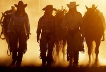 This Dream Called Rodeo  / It's the broncs and the blood, the dust and the mud, and the roar of a Sunday crowd... / by Belle Starr