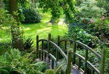 Wonderful gardens / by Julie Watkinson Moore