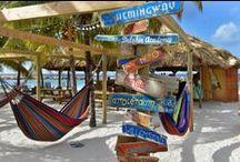 Restaurants & Bars / by Lions Dive & Beach Resort Curaçao