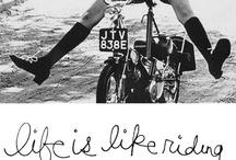 Typography / by Katie Daniel