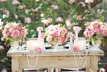 La Vie en Rose / Beautiful things....in shades of pink. / by Ellen Stanclift