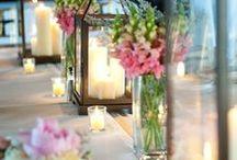 Wedding Ideas / by Suzanne Talley