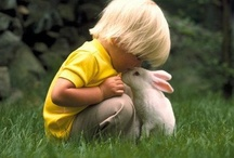 The Bunny Files / All things bunny rabbit. / by Ellen Stanclift