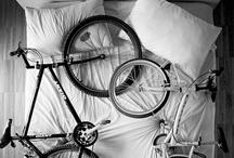 Cycling! / by B+L Bike