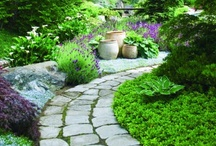 Garden / by VillaHottentotti Blog