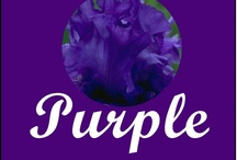 Can't get enough of PURPLES!!! / love purples / by Denise