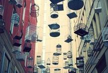 Birdcages / God gave birds wings and us birdcages / by Cathi Franco