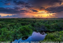 Everglades National Park, Florida / The largest subtropical wilderness in the United States, boasts rare and endangered species. It has been designated a World Heritage Site, International Biosphere Reserve, and Wetland of International Importance. The system begins near Orlando with the Kissimmee River, which discharges into the vast but shallow Lake Okeechobee. Water leaving the lake in the wet season forms a slow-moving river, flowing southward across a limestone shelf to Florida Bay at the southern end of the Florida mainland. / by Marie-Louise Verbeke