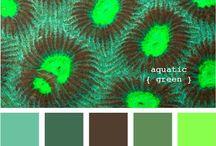 Paint Color Ideas  / by Denee Buchanan-Watson
