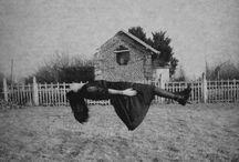 Creepy Stuff  / by Denee Buchanan-Watson