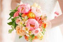 wedding inspiration / by Pippa Petersen