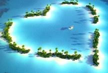 Paradise / by Ibiza Honey