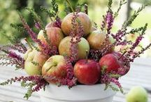 fall, autumn decorations / by Evelyn Chow