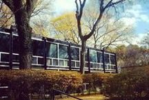 Nicolet Design / This board is about the renovation of my home -- a 1950s mid-century modern home built by architect Mies Van der Rohe. Renovation credit to the innovative and artistic Schmoe, LLC in Detroit, Michigan.  / by Julie Egan