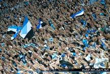 Grêmio Foot-Ball PA / http://www.gremio.net/ / by mateus bier