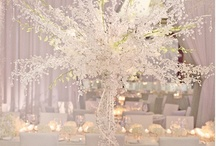 Weddings - GLAMFABULICIOUS / Glamurous and over the top wedding scapes / by Ronelle Van Rooyen / Delicate Elegance Events