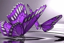 Purple Papillon / by Delicate Elegance Events / Fibromyalgia Warrior