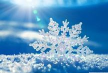 Winter Wonerland / All about #winter and #snow / by Jessica Darnall