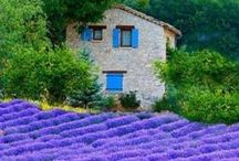 France ~ Romancing / Astoundingly beautiful romantic city and surreal country scenery, love ~ Please FOLLOW me & 5 pins per this board per day & 5 likes please ~ thank you kindly ~ have the best happy healthy day ever! / by Link Reaction