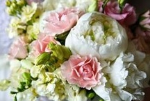 Florist / : a person who sells or grows or designs flowers or ornamental plants  / by My Snohomish Wedding