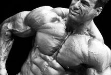 Bodybuilding / Stay tuned for our new sister website devoted entirely to bodybuilding, coming soon. / by Get Fit and Healthy