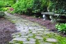 pathways / by Jill Crawford